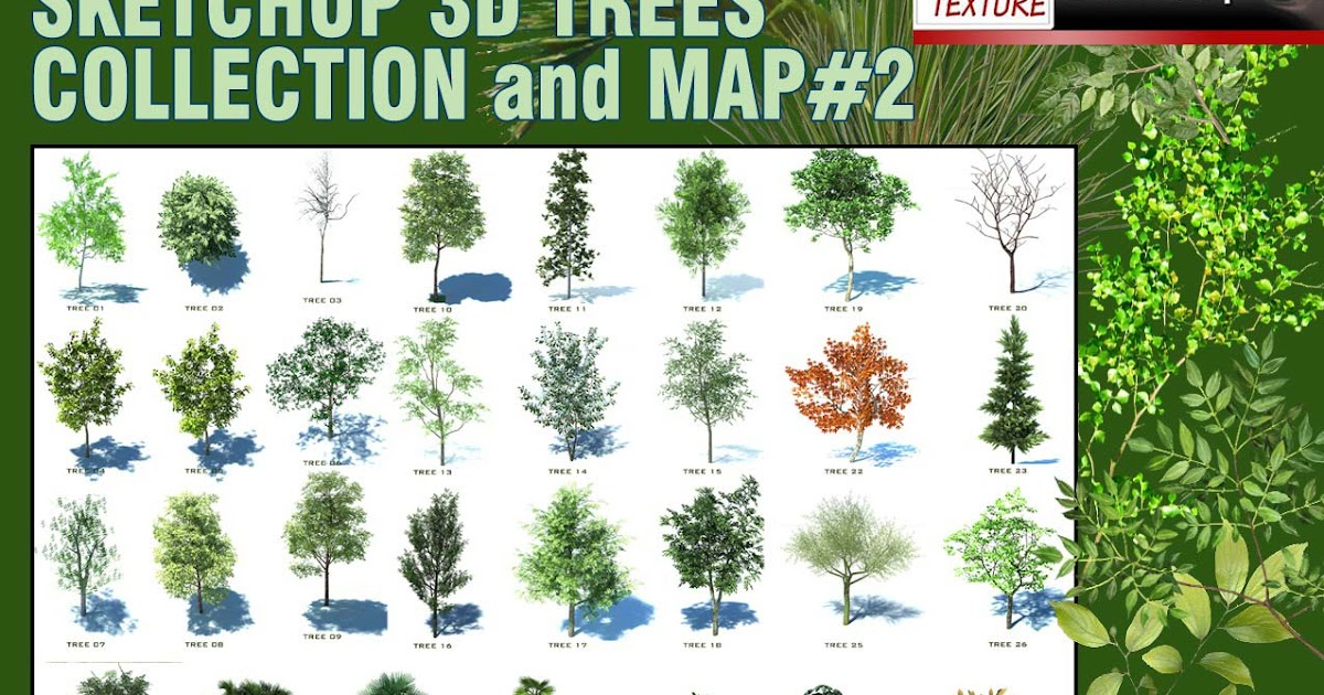 SKETCHUP TEXTURE: SKETCHUP 3D TREES COMPONENTS COLLECTION #2