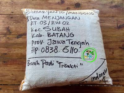 Benih pesana SUHARYANTO Batang, Jateng.