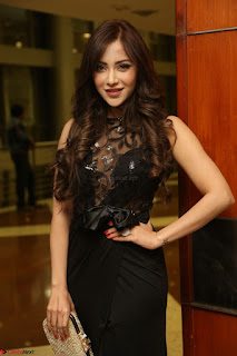 Angela Krislinzki in Transparent Black Gown at Rogue Movie Teaser Launch 1st March 2017 097.JPG