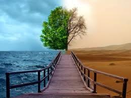 Dreamer Etika Lingkungan