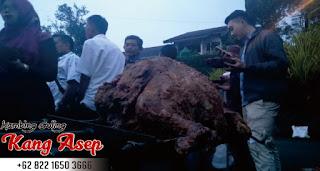 kambing guling dui Villa Saddak Dago