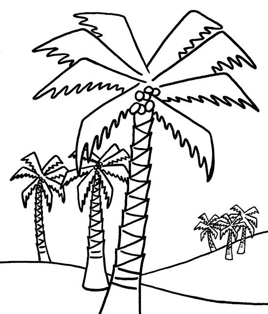 coloriage palmiers