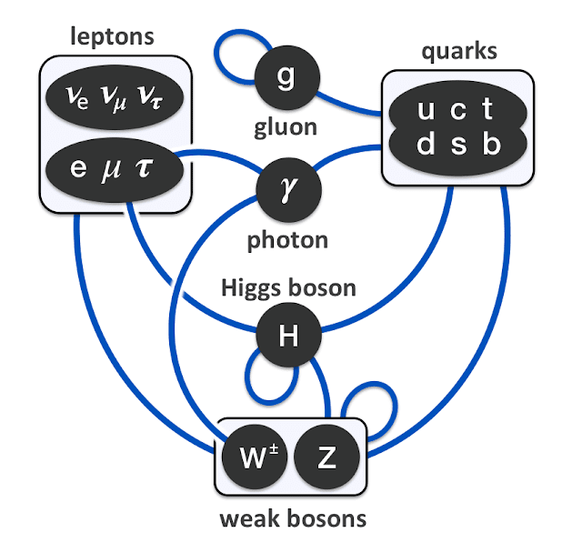 A diagram outlining the interactions between fundamental particles according to the Standard Model.