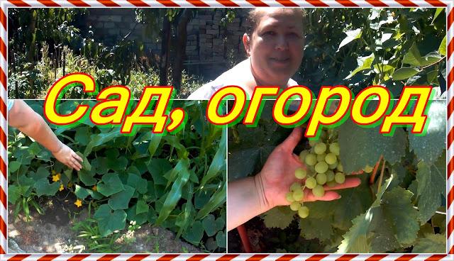 Анонс, следующего видео 22.07.18