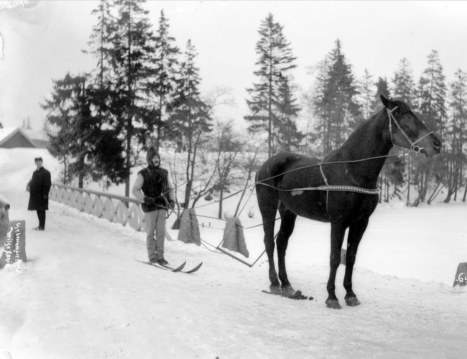 Norway, 1903.