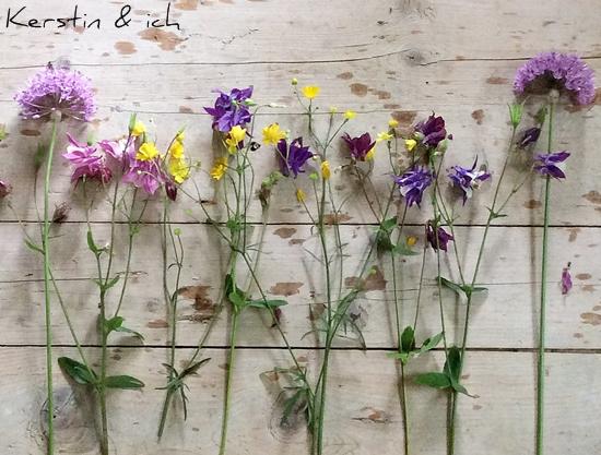 Stillleben mit Wildblumen (Akelei, Allium, Butterblumen)
