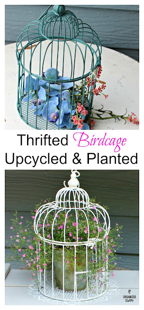 Thrifted Birdcage to Baby's Breath Planter #upcycle #babysbreath
