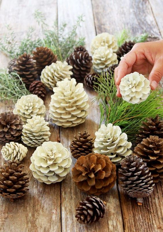 "EASIEST 5 MINUTE ""BLEACHED PINECONES"""