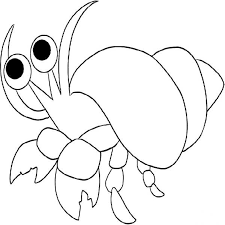 Cute Hermit Crab Images Coloring Pages