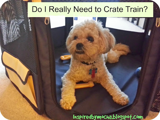 Do I Really Need to Crate Train?