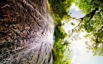 Wallpaper: Spectacular. Nature. Scenery. La Coca Falls