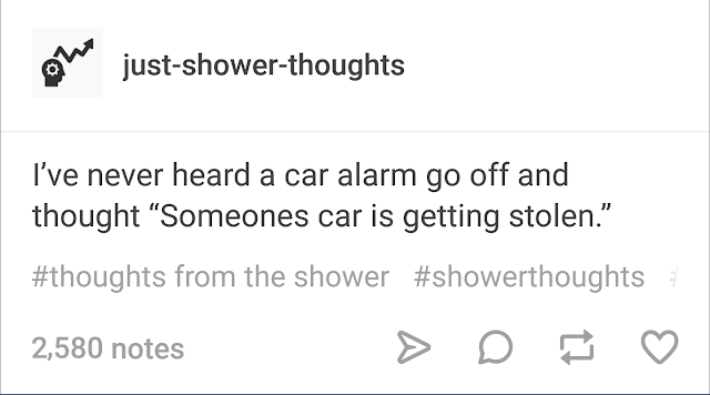 never heard a car alarm and thought somebodys car was being stolen