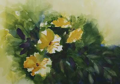 Loose Yellow Hibiscus - Watercolor - JKeese