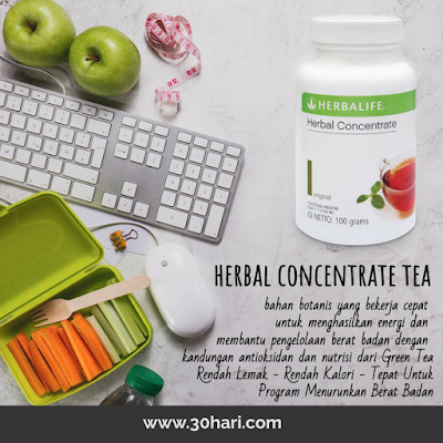 Thermo Tea Teh Pembakar Lemak Herbalife