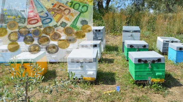 Επιδοτήσεις μελισσοκομίας που τρέχουν αυτή τη στιγμή και πόσα χρήματα δίνουν