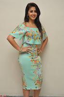 Nikki Galrani in Cute Dress Dress At Marakathamani Success Meet ~  Exclusive 014.JPG