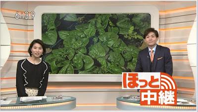 NHK「ほっとニュース北海道」
