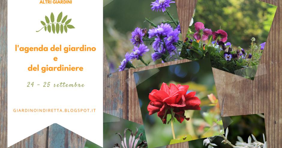 l'agenda del giardino e del giardiniere (24 - 25 settembre)