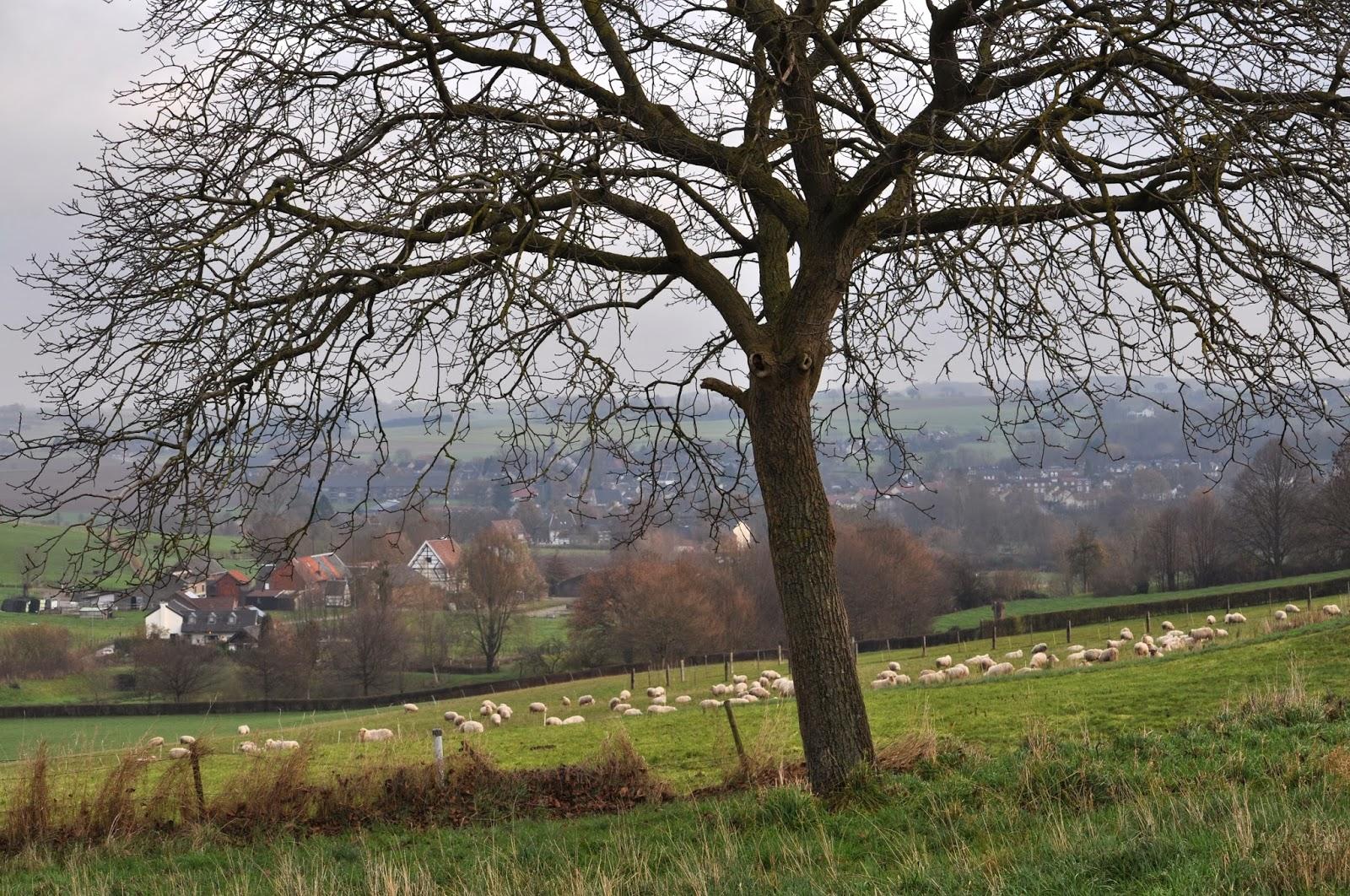 site de rencontre rural