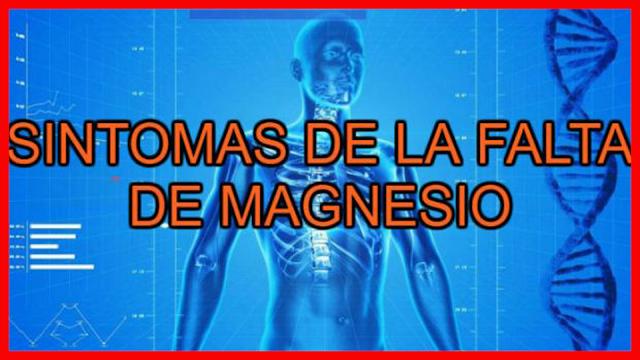 5 síntomas que indican la falta de magnesio en el organismo