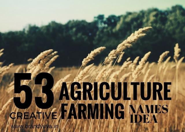 agriculture-farming-business-names-idea