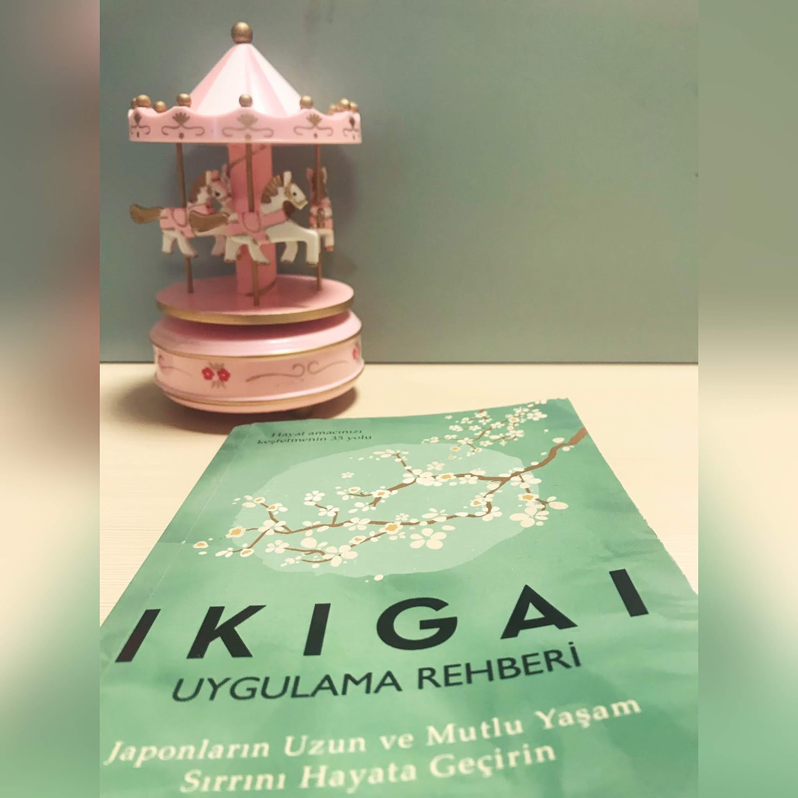 IKIGAI - Uygulama Rehberi