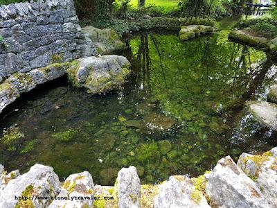 Japanese Garden and Irish National Stud