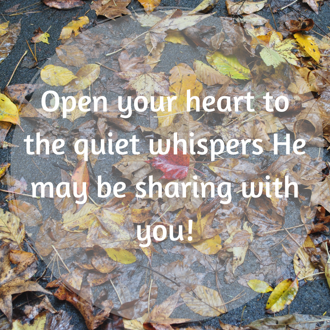 Quiet Whispers Quote