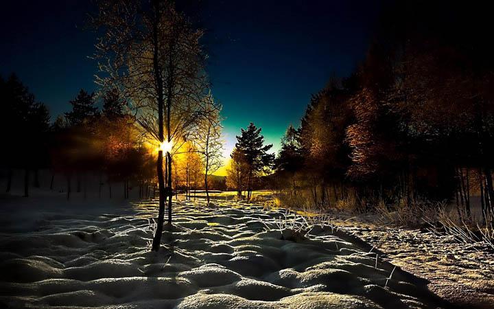 orman manzaralı kış resimleri