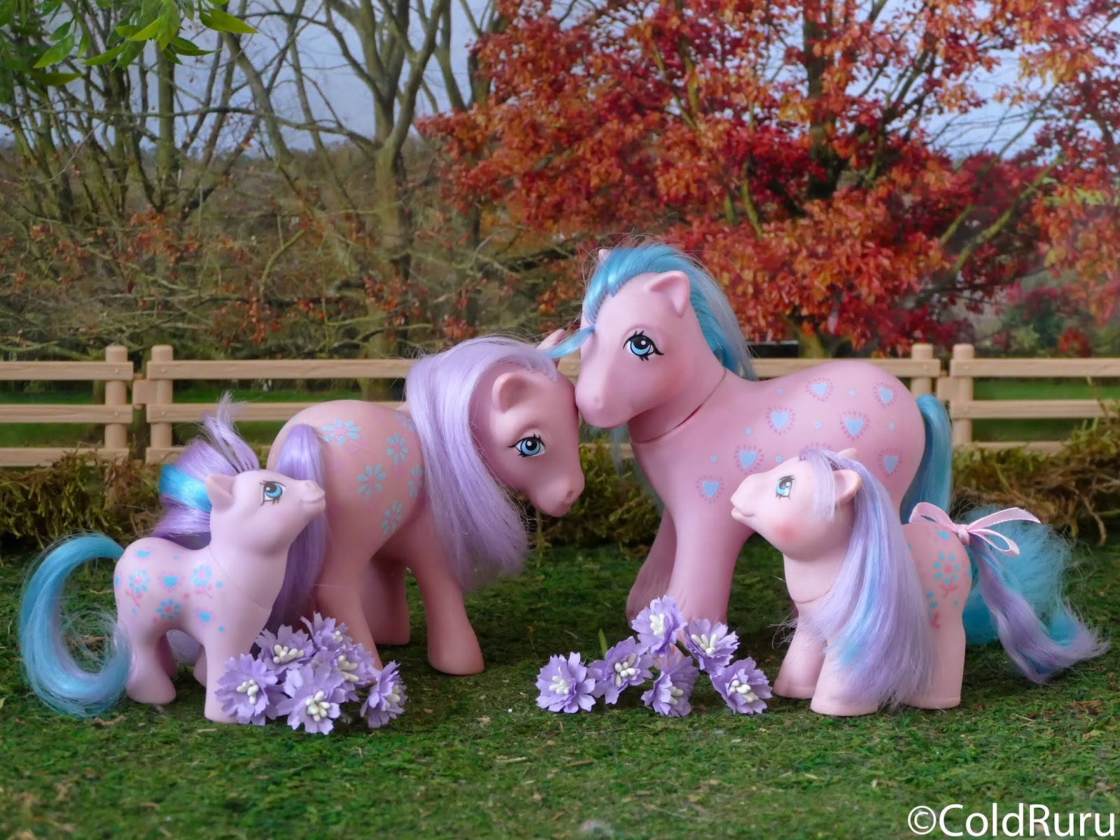 Poneys en Vracs (collection G1) + NEW P.20 - Page 17 P1820218-1