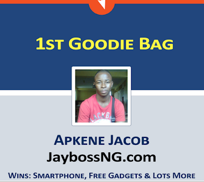 Domainking, See Winners Of The DomainKingNG Lucky Blogger Contest 2015, Akpene Jacob, News,