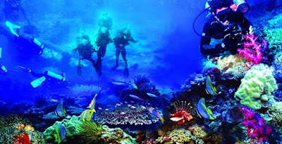 Bunaken Sea park