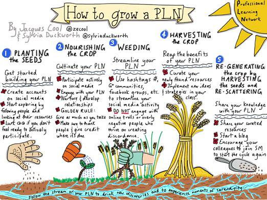 PLN (Personal/Professional Learning Network)