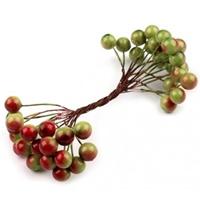 https://www.artimeno.pl/600-owoce-dekoracyjne-susz