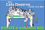 Donate a Kuranda Bed or Tower