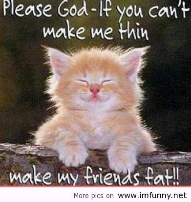 Pic Funny Pictures (# Funny animals with sayings picture ...