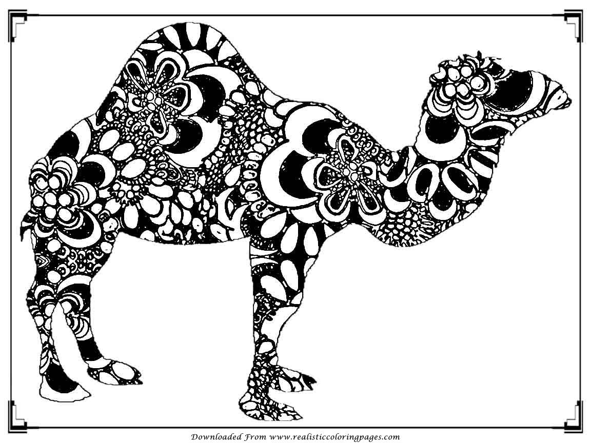 Printable Camel Coloring Pages For Adult Realistic Coloring Pages