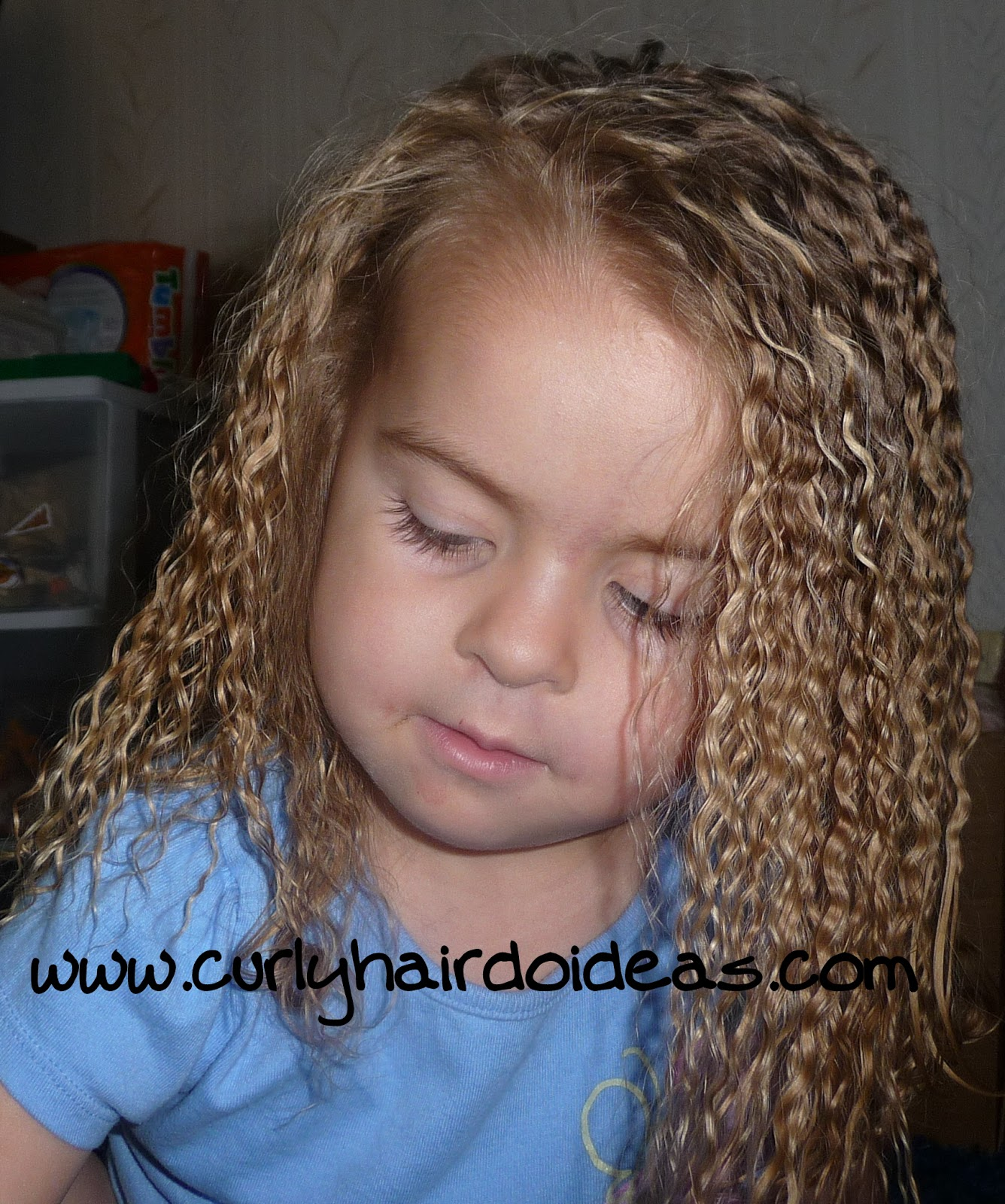 Curly Hairdo Ideas: Braid Out! or Day After Waves
