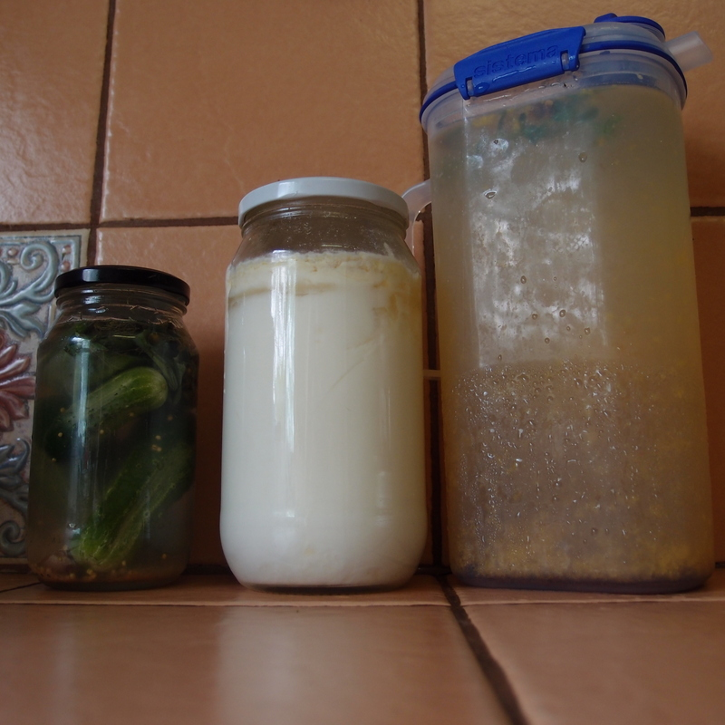 eight acres: kefir for beginners