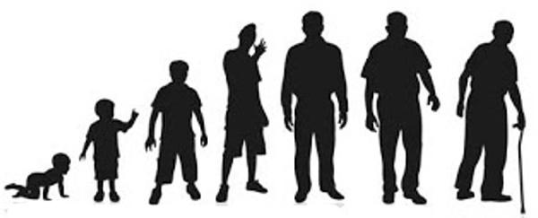 نبوغ العقل مراحل عمر الانسان