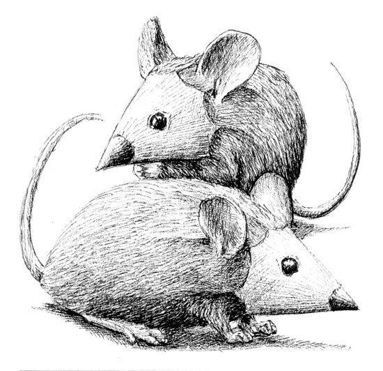 12-Mouse-Pencils-Redmer-Hoekstra-Surreal-Animal-Drawings-Pen-on-Paper-www-designstack-co
