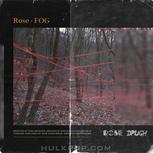Rose – Fog – Single