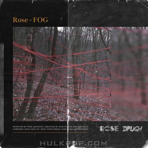 Rose – Fog – Single