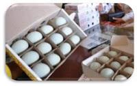 Pengemasan Telur Bebek