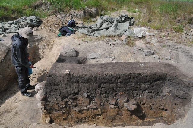 Rock art on Danish island of Bornholm older than previously thought