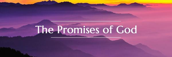 Bible Verses Prayerful Use Of Every Promises Of God Divine Spirit
