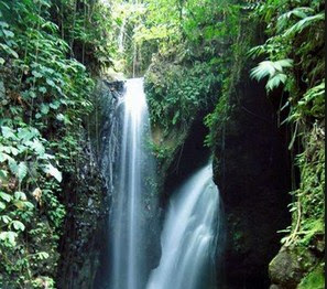 lokasi Air Terjun Campuhan Gitgit GTW Surga yang Tersembunyi Di Bali