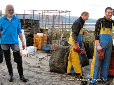 owner and workers at Carlingford Oyster Company in Carlingford, Ireland