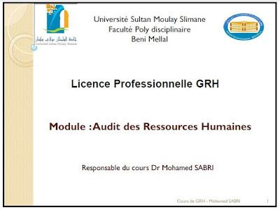 Audit des Ressources Humaines PDF Dr Mohamed SABRI