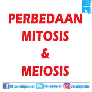 Perbedaan Antara Proses Mitosis dan Meiosis Pada Hewan Dalam Bentuk Tabel